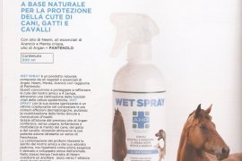Wet Spray 500ml