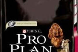 Adult Digestion 14 kg Purina Pro Plan