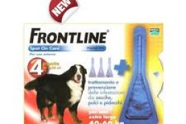 Frontline per cani extra large 40-60 kg
